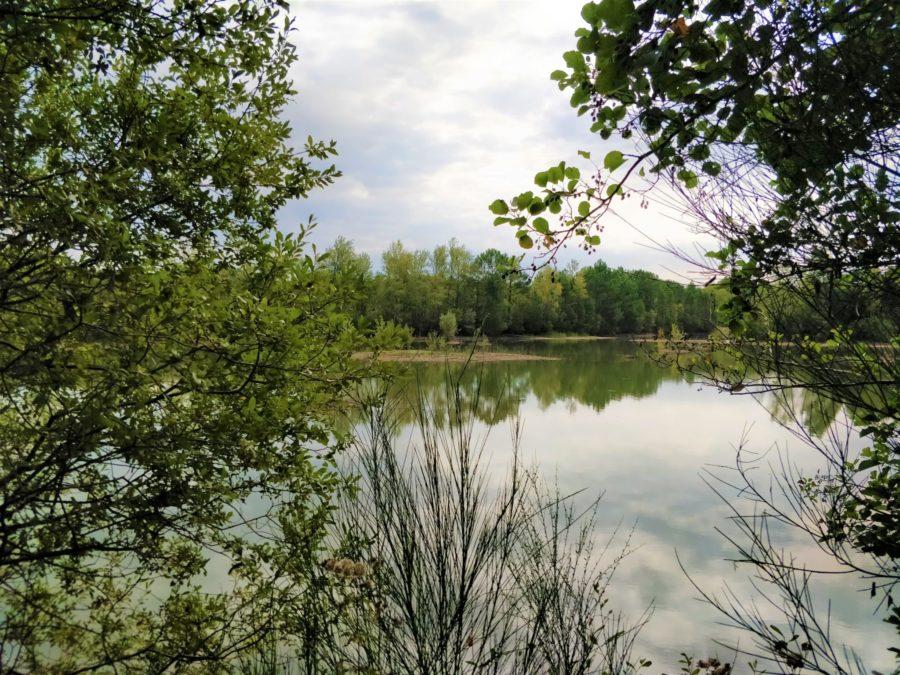 Visites Nature & Patrimoine