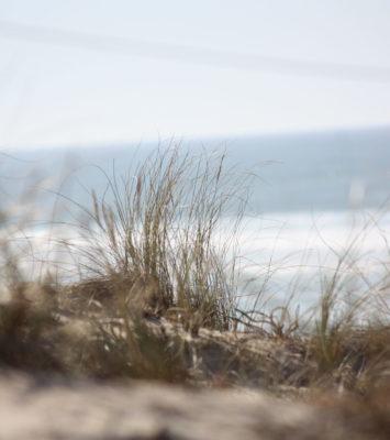 La plage naturiste de La Jenny