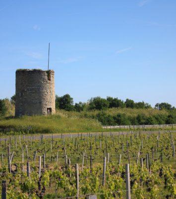 Domaines viticoles AOC Haut-Médoc