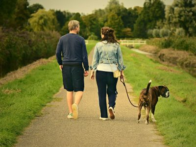 Les meilleures sorties à faire avec son chien dans le Médoc