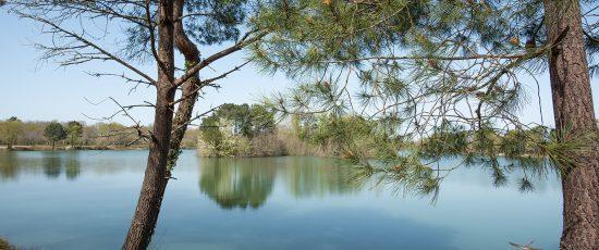 5 escapades nature à deux pas de chez vous